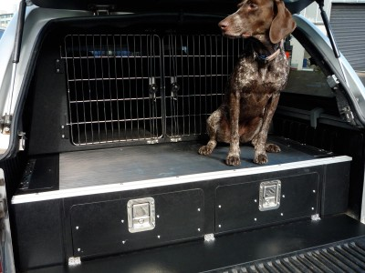 Dogtran, has expert knowledge & experience in dog van conversions for for the transit of animals. Call 01952 680433 to discuss your requirements.